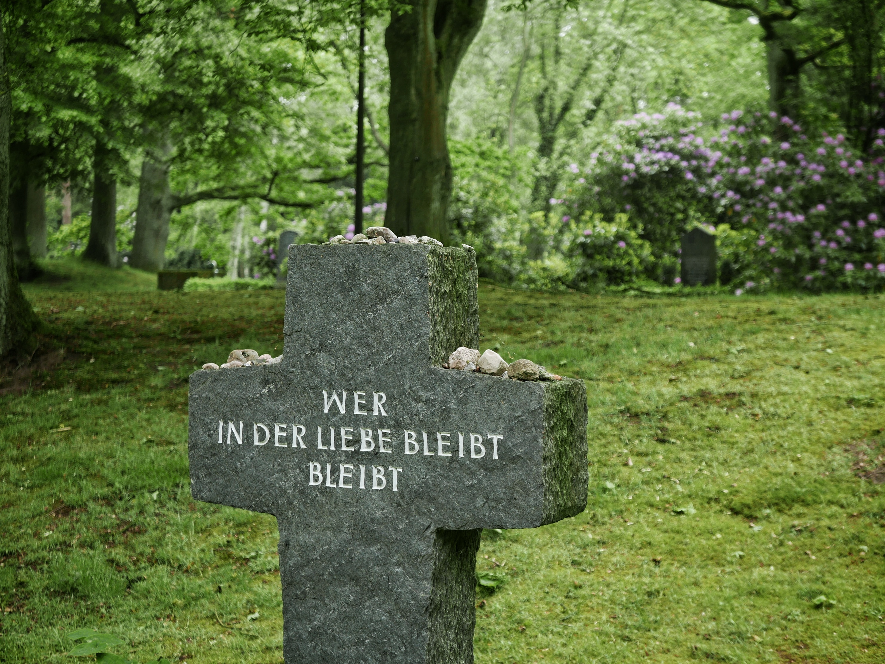 Ohlsdorfer Friedhof, Hamburg, 2019 | © Anne Seubert