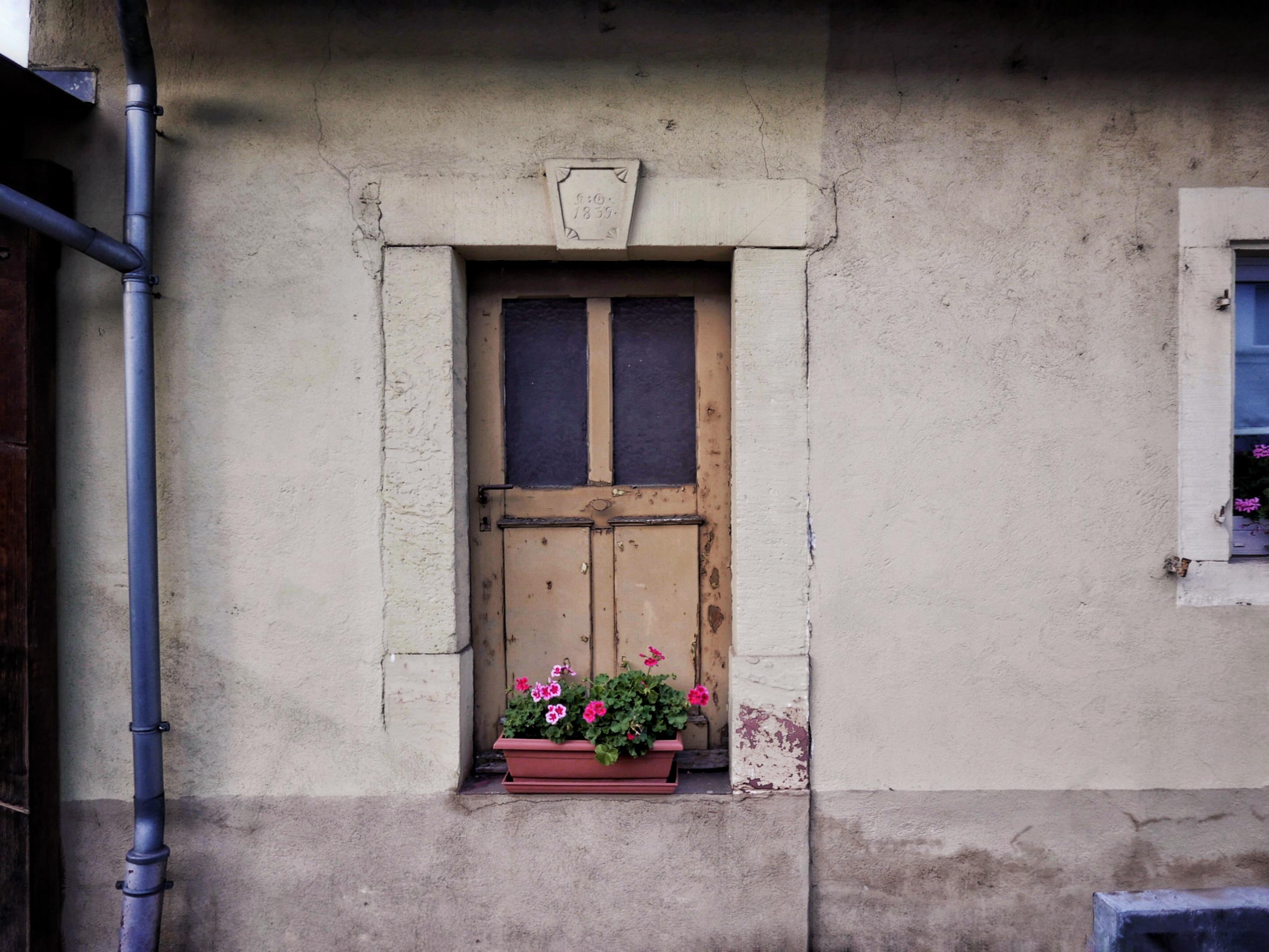 Tür voll Blumen | ©Anne Seubert