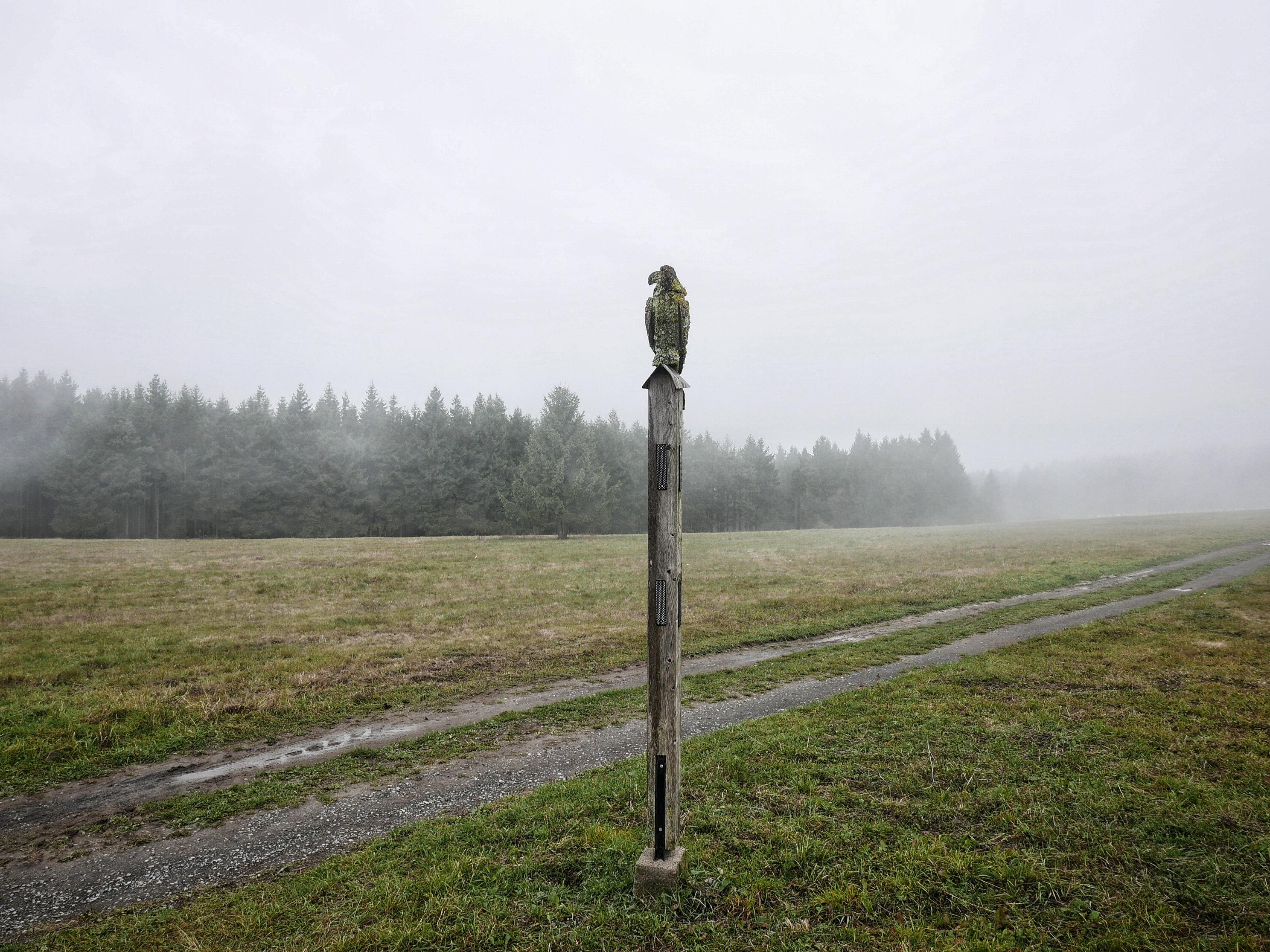 Einsame Herbstlandschaft im Nebel, Thön | Anne Seubert
