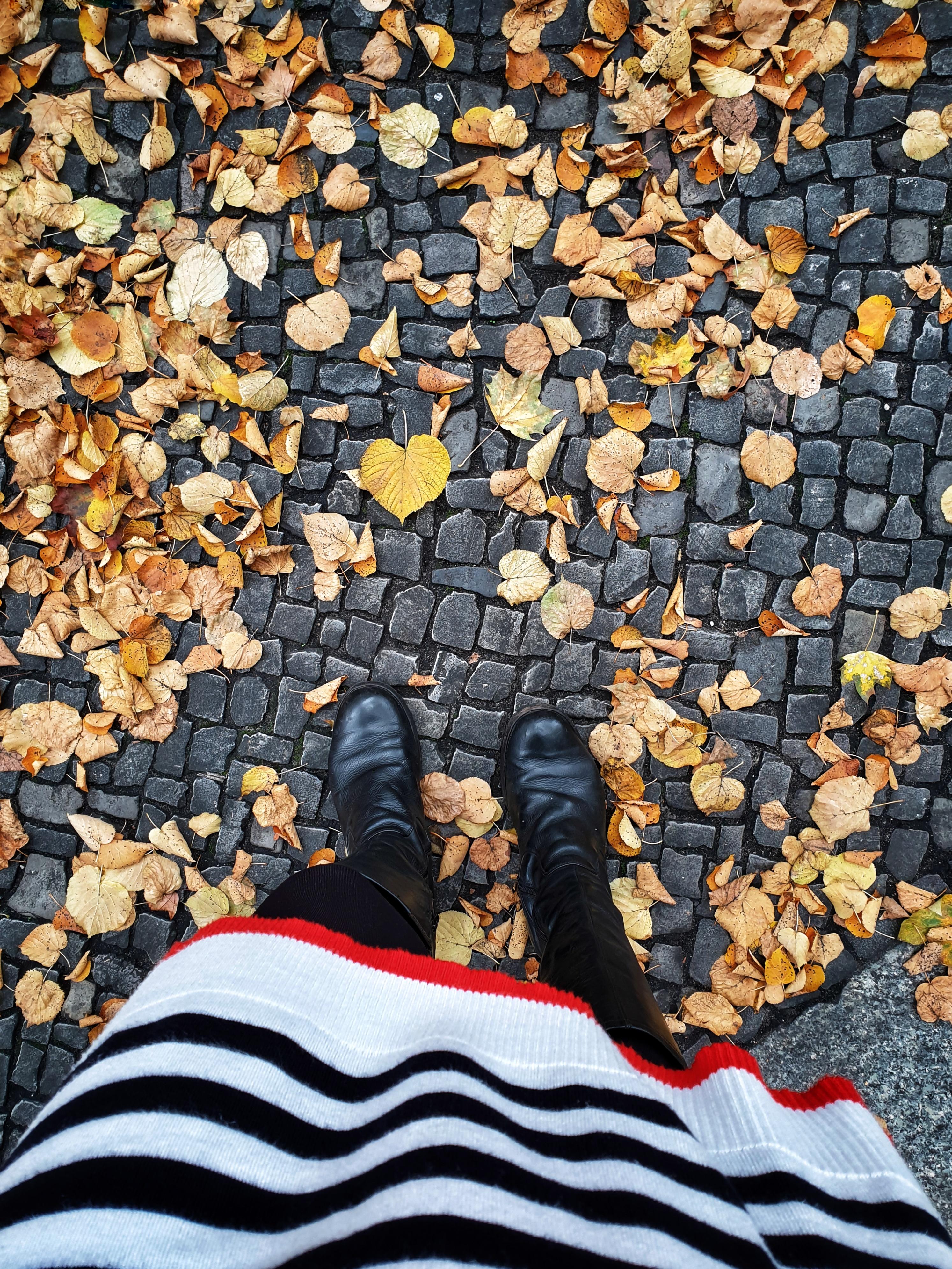 Herbstliebe | Anne Seubert