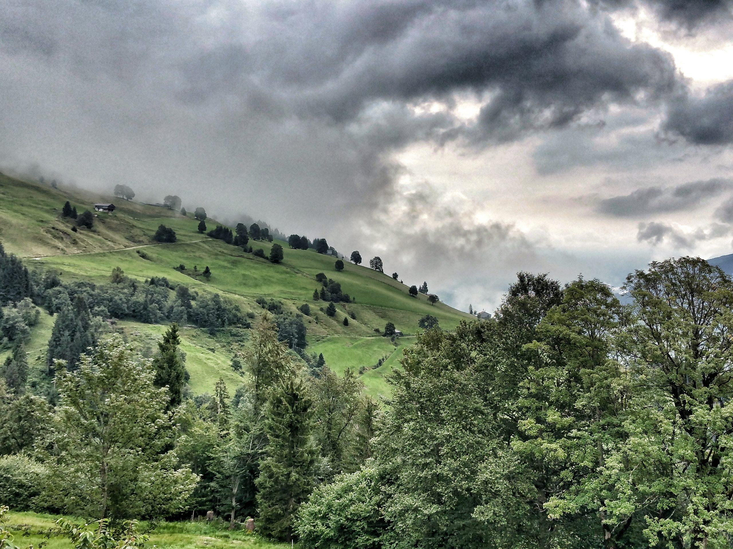 Wald und Wolken |©Anne Seubert